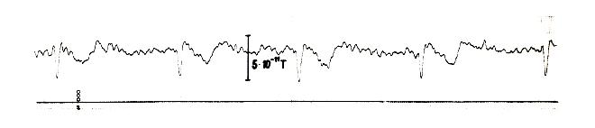 Bild9_MagnetokardiogrammdererstenStunde.jpg